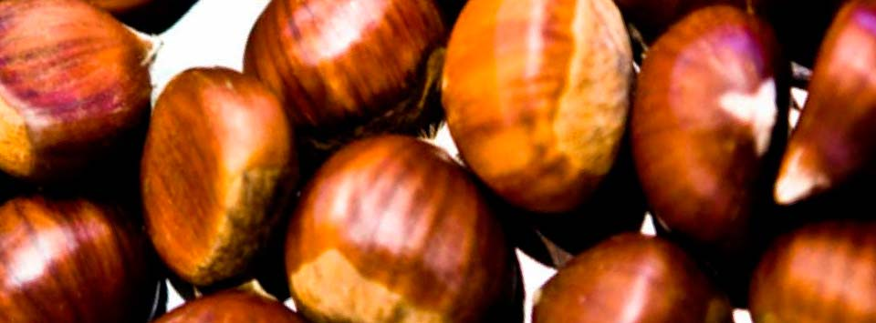 Valor nutricional de las castañas y sus beneficios